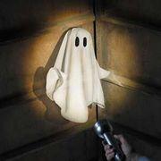 paranormal ghost haunt